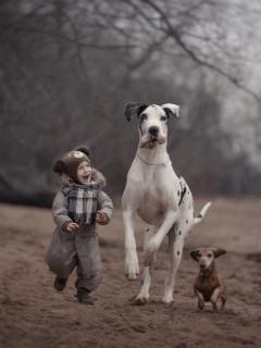 温馨童真 小朋友和他们的巨型犬的友谊